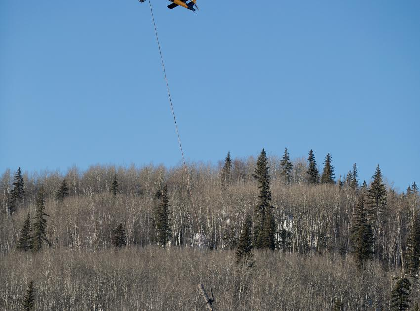 In steep and riparian areas where it is unsafe to use clearing machinery, trees are cut manually and helicopters are used to assist in moving logs. (Spring 2019)