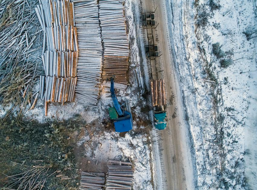 As part of our reservoir clearing program, spruce and pine logs are stacked for shipment to lumber mills. (December 2019)