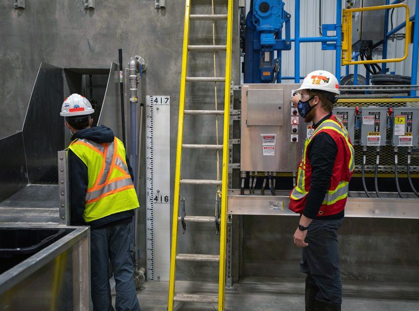 Biologists sort fish inside Site C's temporary upstream fish passage facility. (September 2020)